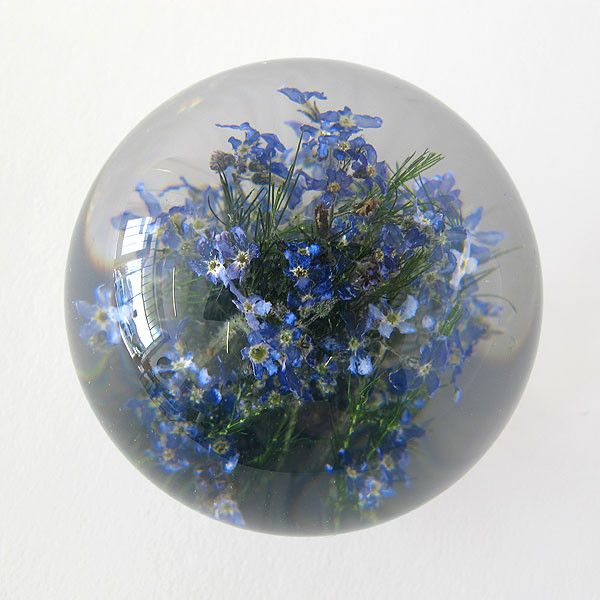 paperweight | forget me not | small