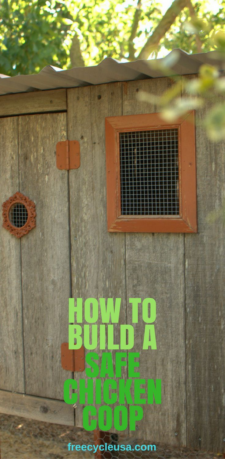 578 best chicken coops images on pinterest backyard chickens