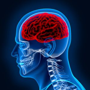 Contact Kershaw, Cook & Talley to speak with a brain injury attorney. Call us for a free case consultation at (888) 997-5170