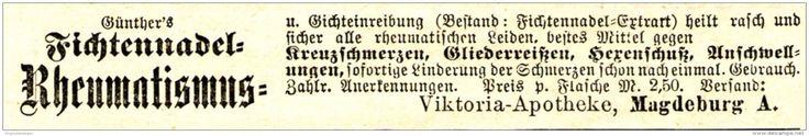 Original-Werbung/ Anzeige 1903 - GÜNTHER'S FICHTENNADEL-EINREIBUNG / VIKTORIA-APOTHEKE MAGDEBURG - Ca. 100 X 15 Mm - Werbung