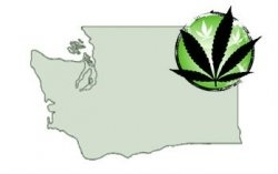 This is a look at Washington State medical marijuana laws, issues and ways for marijuana patients to have safe access to their doctor recommended...