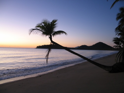Palm Cove - Cairns QLD Australia. Visited here with the kids whilst staying in Cairns.