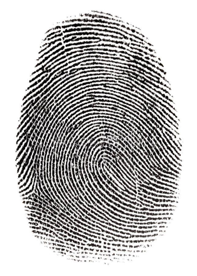 Real fingerprint. In white background Super macro , #Aff