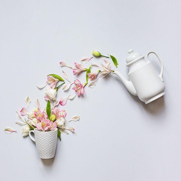 fleurs,tasse et théière                                                                                                                                                                                 Plus