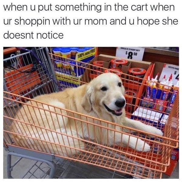 When you put something in the cart while you're shopping with your mom and you hope she doesn't notice