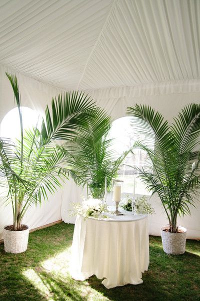 Green and white wedding ceremony decor - potted palm trees {Millie B Photography}