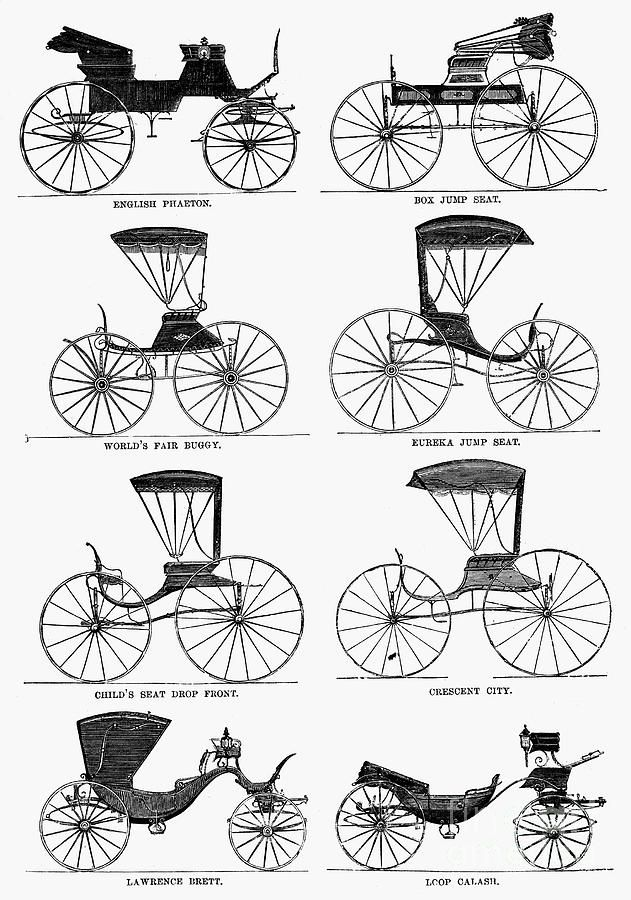 Carriage Types, C1860 Photograph