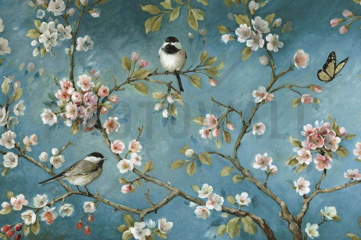 Blossom - Wall Mural & Photo Wallpaper - Photowall