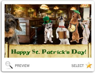 St. Patrick's Day Fun dog ecard