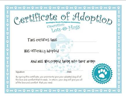 Best 10 teddy adoption images on pinterest adoption for Build a bear birth certificate template