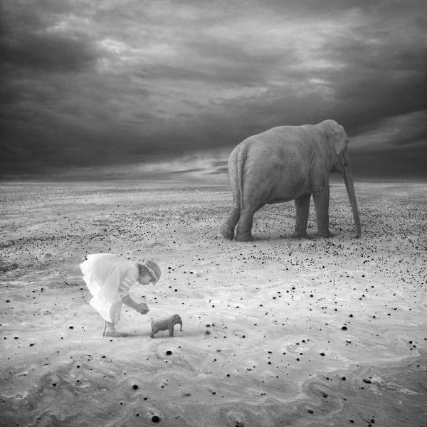 Out of Africa  By Dariusz Klimczak