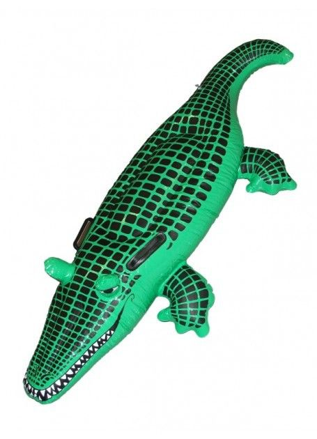 Let's Party With Balloons - Inflatable Crocodile, $25.00 (http://www.letspartywithballoons.com.au/inflatable-crocodile/)
