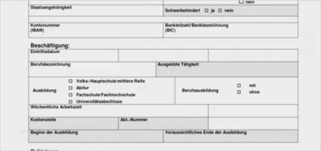 Likeable Personalfragebogen Vorlage Word Vorlagen Word Lebenslauf Vorlagen