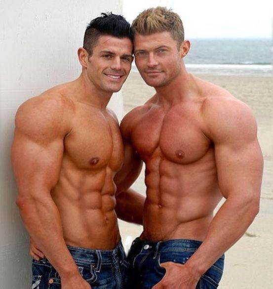 gays muscle