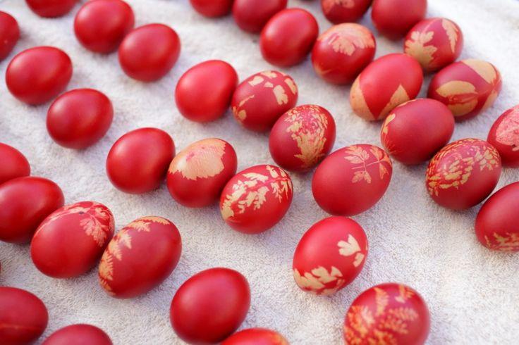 red eggs for Easter Recipe at WWW.EFFIGEORGIA.COM.AU