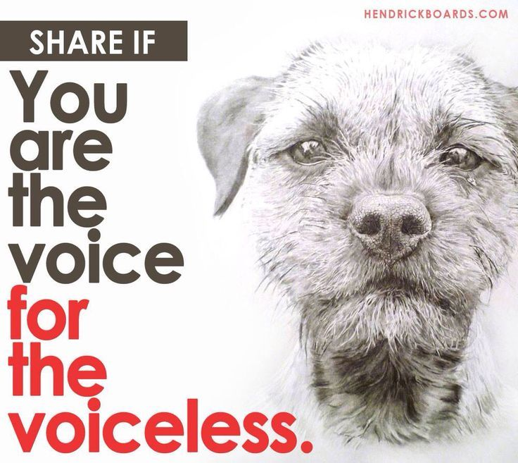 Be their voice.....