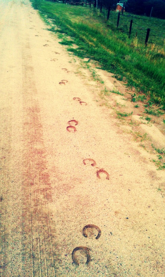 Trail of horseshoes - garden path of stones with horseshoe imprints?