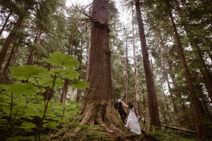 A couple has a small, intimate wedding in Alaska for their elopement. For their …