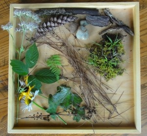 Go on a nature walk with your little one(s) and collect things as you go. Later you can talk with them about what they found and even make a nature art collage.