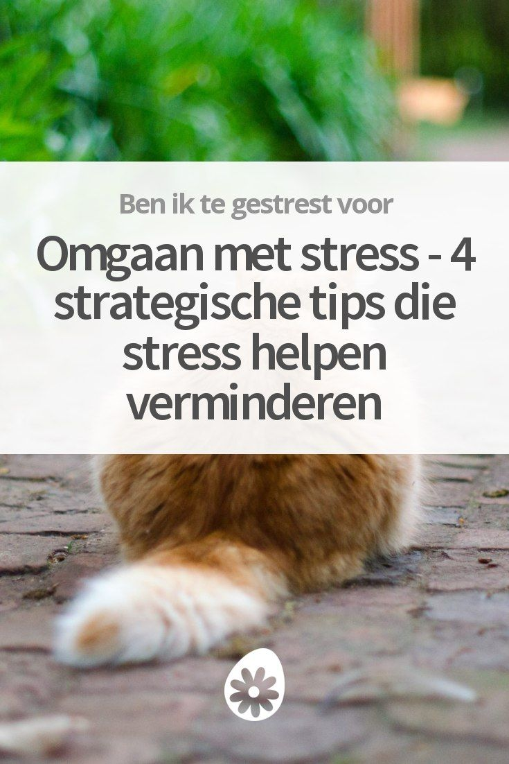 Deze 4 tips helpen je slimmer omgaan met stress. Zodat je weer lekker kunt ontspannen. ✌