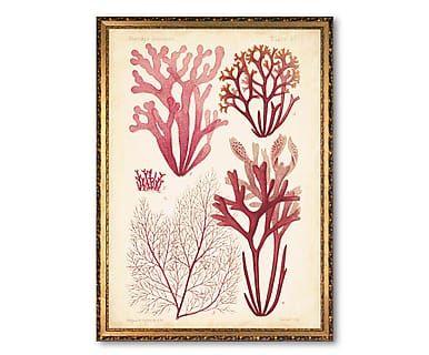 Affiche encadrée AMBROISE, rose et beige - 51*36