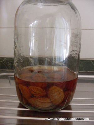 Questo delizioso liquore dal sapore simile ad un Cognac aromatizzato si prepara con i noccioli di pesche, le pesche si mangiano e nocciol...