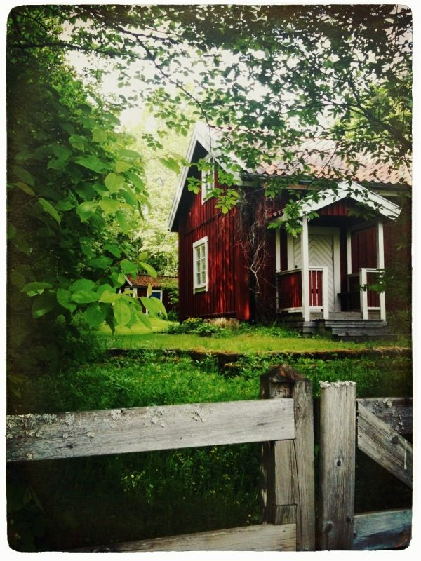 Take a scenic train ride to travel to your Homestay Family in Uppsata, Sweden. Immerse yourself in their lifestyle and get to know them!