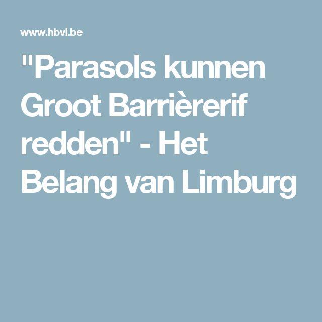 """""""Parasols kunnen Groot Barrièrerif redden"""" - Het Belang van Limburg"""