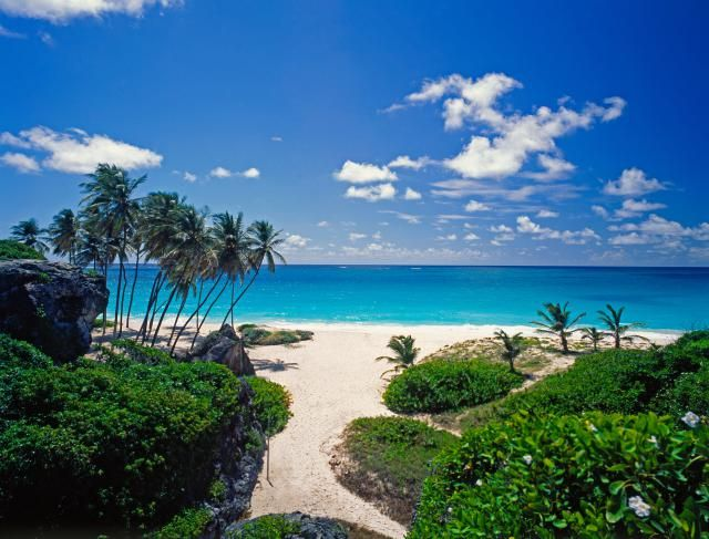Barbados' Best Beaches: Bottom Bay Beach