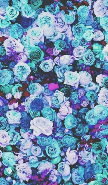 Blue Roses Picture Floral