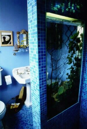You could see that this picture is cool because it has a fishtank inside the bathroom.
