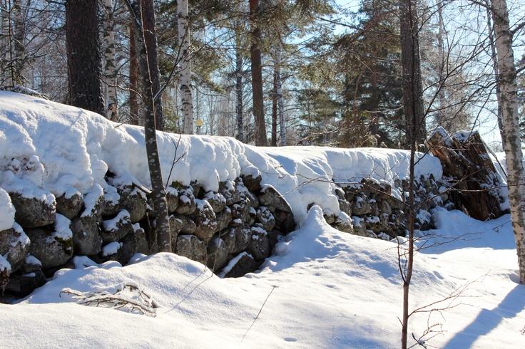 Winter in Punkaharju 4