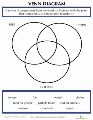 math worksheet : 1000 images about educational guide for watermelon magic ideas on  : Science Worksheets For 4th Grade Plants