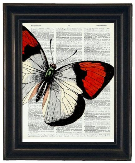 Hey, I found this really awesome Etsy listing at https://www.etsy.com/listing/101411058/bogo-sale-butterfly-art-print-butterfly