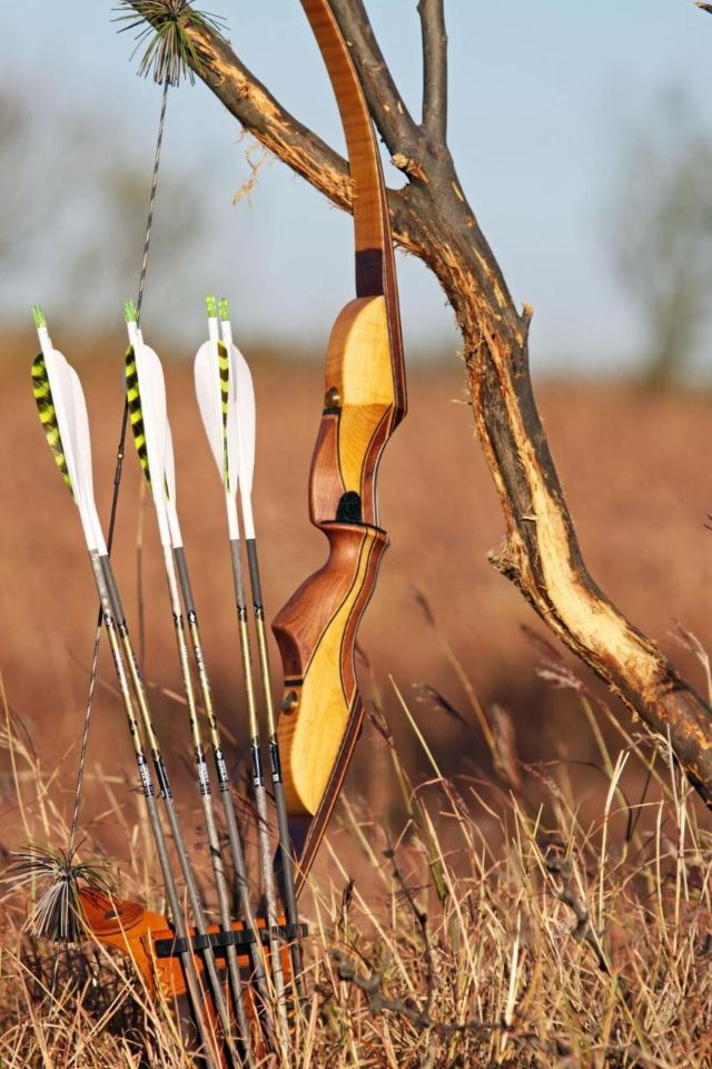 "archery hunting essay A study of 80 radio-collared white-tailed deer found that of the 22 deer who had been shot with ""traditional archery equipment,"" 11  sport-hunting, or at the ."