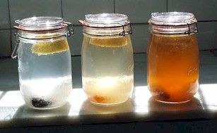 tibi - vodný kefír