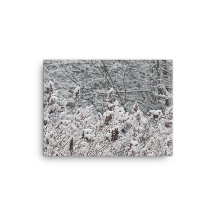 "Canvas ""Pattern in Snow"""