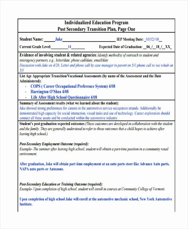 Business Transition Plan Template In 2020 Individualized