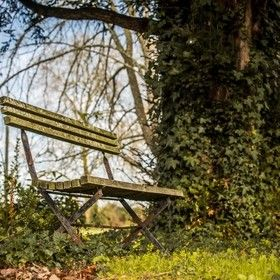 ALonelyBench by Thomas_Knox
