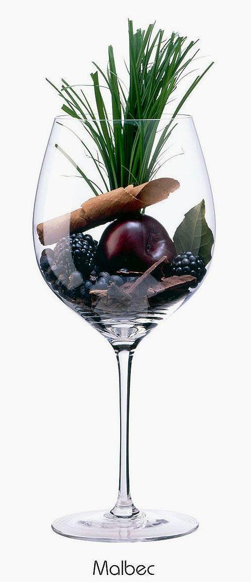 Malbec (red) | Aromas of blackberry, plum, bay laurel, juniper, dark chocolate, tobacco, green grass, carnations | France