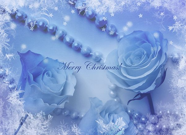 #greetingcards #merrychristmas #card #blue #roses #pearls #giftidea