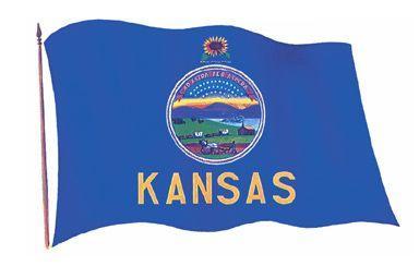 Kansas Flag-- Happy Kansas Day, everyone!