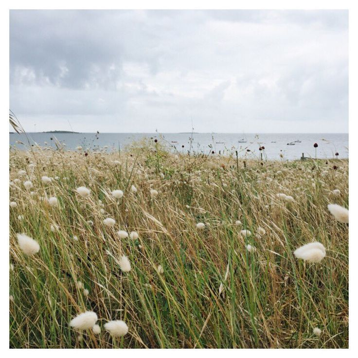 réveil en Bretagne @bdcbleblog