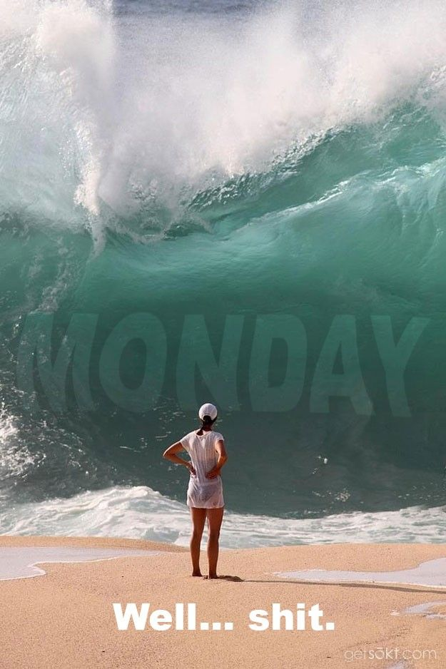 Monday Mourning   Vol. 42 (20 Pics) - Ride that monday wave/ ha ha that's brillant A. glad to see you have my sense of Humor!.I Love It xx :-)