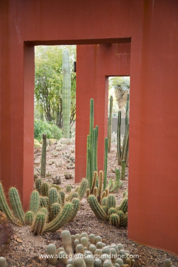 Cement arches used to accent the cactus garden at Desert Botanical Gardens in Phoenix