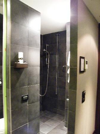 31 best walk in showers no doors images on pinterest bathroom bathrooms and home ideas. Black Bedroom Furniture Sets. Home Design Ideas