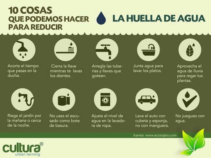 Ahorrar agua, 10 consejos básicos fáicles de seguir. #agua #medioambienta #thinkgree