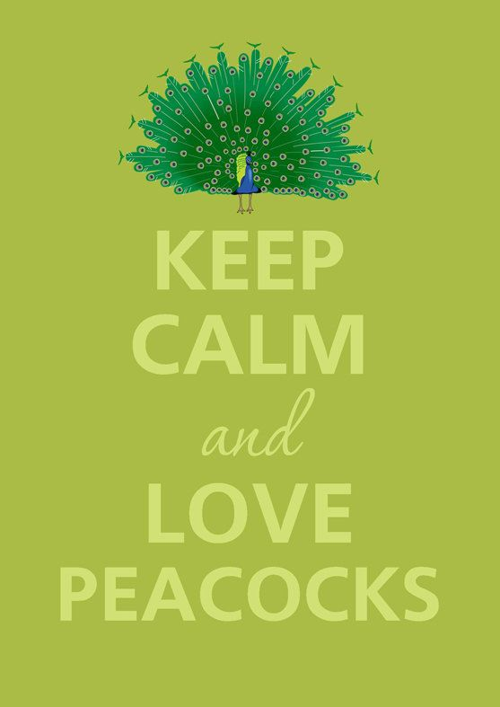 keep calm♥peacocks
