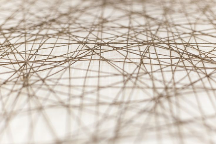 That, who, or which | OxfordWords blog