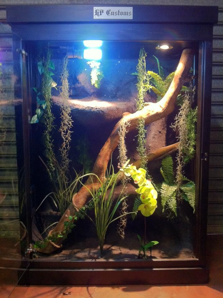 Reptile Enclosure https://www.facebook.com/pages/HP-Customs-Custom-Reptile-Enclosures/572704122760765